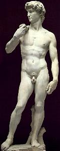 David by Michelangelo reversed